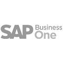 SAP Business One Consultant